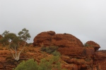 'The Rabbit' @ Kings Canyon