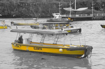 Taxi boat @ Santa Cruz